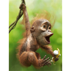 Opička